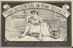 Advert For Jeye's Disinfectants